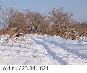 Купить «Автомобильная колея на снегу», фото № 23841621, снято 23 декабря 2012 г. (c) Олег Рубик / Фотобанк Лори