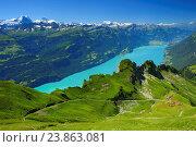 Купить «Brienzer Rothorn mountain, Bernese Oberland, Switzerland,», фото № 23863081, снято 19 июля 2016 г. (c) age Fotostock / Фотобанк Лори