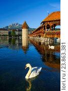 Купить «Chapel bridge with Pilatus, Lucerne, Switzerland», фото № 23863381, снято 23 июня 2016 г. (c) age Fotostock / Фотобанк Лори