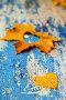 Осенние листья на деревянном столе со старой синей краской, фото № 23873021, снято 7 октября 2016 г. (c) Валерий Бочкарев / Фотобанк Лори