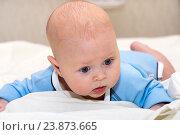 Купить «Малыш лежит на животе», фото № 23873665, снято 24 февраля 2015 г. (c) Андрей Некрасов / Фотобанк Лори