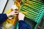 internet connection. engineer connecting fiber optic cables, фото № 23874733, снято 3 февраля 2016 г. (c) Дмитрий Калиновский / Фотобанк Лори