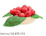 Купить «Корзиночка с ягодами малины», фото № 23875113, снято 1 августа 2016 г. (c) LightLada / Фотобанк Лори