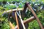Старинный сельский инвентарь, эксклюзивное фото № 23904561, снято 28 августа 2016 г. (c) Анатолий Матвейчук / Фотобанк Лори