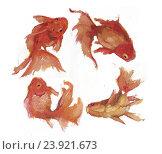Купить «Золотые рыбки», иллюстрация № 23921673 (c) Лев Норбоев / Фотобанк Лори