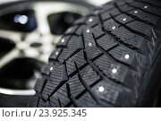 Купить «Автомобильная шина с шипами», фото № 23925345, снято 25 октября 2016 г. (c) Дмитрий Бачтуб / Фотобанк Лори