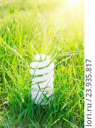 Купить «Eco bulb on green grass and sun», фото № 23935817, снято 24 апреля 2011 г. (c) easy Fotostock / Фотобанк Лори
