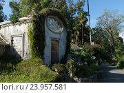 Купить «Батуми. Ботанический сад. Старая оранжерея», фото № 23957581, снято 6 июня 2016 г. (c) Валерий Ситников / Фотобанк Лори