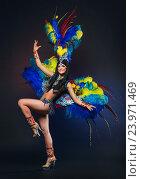 Купить «Симпатичная молодая девушка в красочном карнавальном костюме с перьями на темном фоне», фото № 23971469, снято 24 января 2015 г. (c) Евгений Захаров / Фотобанк Лори