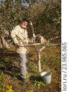 Купить «Мужчина белит деревья», фото № 23985065, снято 21 октября 2016 г. (c) Акиньшин Владимир / Фотобанк Лори