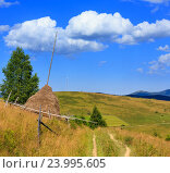 Купить «Summer mountain country view (Carpathian, Ukraine).», фото № 23995605, снято 20 июня 2019 г. (c) Юрий Брыкайло / Фотобанк Лори
