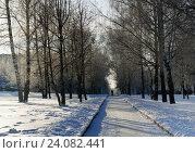 Купить «Winter landscape», фото № 24082441, снято 16 января 2016 г. (c) ElenArt / Фотобанк Лори