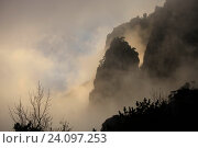 Купить «Силуэт горы Демерджи в тумане», фото № 24097253, снято 21 октября 2016 г. (c) Яна Королёва / Фотобанк Лори