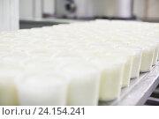 Купить «Cottage cheese in plastic package», фото № 24154241, снято 20 июля 2019 г. (c) Яков Филимонов / Фотобанк Лори