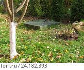 Купить «Люк автономной канализационной системы на садовом участке осенью», фото № 24182393, снято 5 октября 2016 г. (c) Анатолий Заводсков / Фотобанк Лори