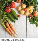 Купить «freshly grown raw vegetables», фото № 24199613, снято 17 июля 2016 г. (c) Jan Jack Russo Media / Фотобанк Лори