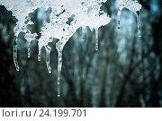 Купить «Весна идёт», фото № 24199701, снято 10 марта 2014 г. (c) Хайрятдинов Ринат / Фотобанк Лори