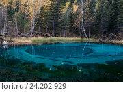 Небольшое голубое озеро в горах Алтая, Россия, фото № 24202929, снято 27 сентября 2016 г. (c) Liseykina / Фотобанк Лори
