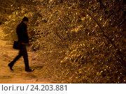 Купить «Обледеневшие ветки дерева вечером в зимнем парке после ледяного дождя в городе Москве, Россия», фото № 24203881, снято 11 ноября 2016 г. (c) Николай Винокуров / Фотобанк Лори