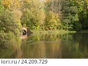 Купить «Начало осени, утки на воде», эксклюзивное фото № 24209729, снято 13 октября 2016 г. (c) Svet / Фотобанк Лори