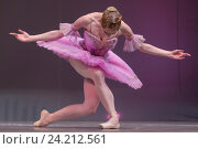 Купить «Балерина кланяется зрителям в зале после выступления на театральной сцене в городе Москве», фото № 24212561, снято 4 ноября 2016 г. (c) Николай Винокуров / Фотобанк Лори