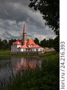 Купить «Приоратский дворец в Гатчине», фото № 24216393, снято 15 июня 2010 г. (c) Анна Костенко / Фотобанк Лори