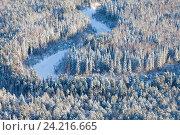Купить «Forest river in cold winter day, top view», фото № 24216665, снято 12 ноября 2016 г. (c) Владимир Мельников / Фотобанк Лори