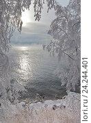 Купить «Байкал. Берег озера с заснеженными деревьями в морозный ноябрьский день», фото № 24244401, снято 20 ноября 2016 г. (c) Виктория Катьянова / Фотобанк Лори