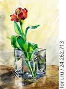 Тюльпан в стеклянной вазе на столе. Акварель. Стоковая иллюстрация, иллюстратор Елена Лобовикова / Фотобанк Лори