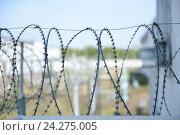 Типичный тюремный пейзаж. Исправительная система Россия УФСИН (2015 год). Редакционное фото, фотограф Mikhail Erguine / Фотобанк Лори