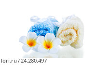 terrycloth towels and tropical flowers isolated on white background. Стоковое фото, фотограф Константин Лабунский / Фотобанк Лори