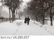 Снегопад в ноябре. Стоковое фото, фотограф Владимир Иванов / Фотобанк Лори