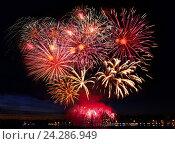 Beautiful colorful firework in a night sky. Стоковое фото, фотограф ElenArt / Фотобанк Лори