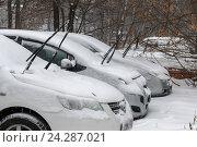 Заснеженные автомобили на парковке. Стоковое фото, фотограф Владимир Иванов / Фотобанк Лори