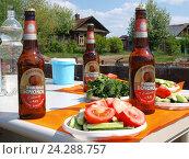 Купить «Пикник на даче. Бутылки пива, нарезанные овощи на столе под ярким солнцем», фото № 24288757, снято 28 мая 2015 г. (c) Евгений Ткачёв / Фотобанк Лори