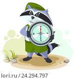 Купить «Енот бойскаут держит в лапах туристический компас», иллюстрация № 24294797 (c) Алексей Григорьев / Фотобанк Лори