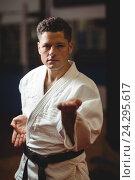 Купить «Karate player practicing», фото № 24295617, снято 8 сентября 2016 г. (c) Wavebreak Media / Фотобанк Лори