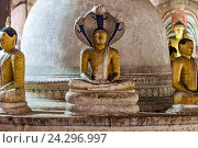 Статуя Будды с коброй над головой в пещерном храме Дамбулла Шри Ланка, фото № 24296997, снято 5 ноября 2009 г. (c) Эдуард Паравян / Фотобанк Лори