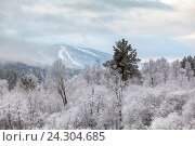 Купить «Гора Завьялиха», фото № 24304685, снято 6 апреля 2016 г. (c) Александр Цуркан / Фотобанк Лори