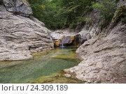 Горная река в лесной и горной местности. Крым. Стоковое фото, фотограф MARINA EVDOKIMOVA / Фотобанк Лори