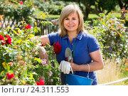 Купить «mature woman with tools in garden», фото № 24311553, снято 17 июня 2016 г. (c) Яков Филимонов / Фотобанк Лори