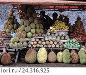 Купить «Indonesia, Bali, market, sales, tropical fruits, Asia, island, street sales, pineapple, bananas, breadfruits, Durian, avocados, litchis, food, eat, trade, economy, outside», фото № 24316925, снято 15 января 2003 г. (c) mauritius images / Фотобанк Лори