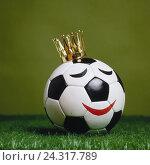 Купить «Football, crown, 'king of football', icon, material recording, world championship, world championship, EM, European championship, sport, hobby, entertainment...», фото № 24317789, снято 17 июля 2018 г. (c) mauritius images / Фотобанк Лори