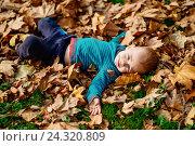 Мальчик лежит в листьях. Стоковое фото, фотограф Елена Ганненко / Фотобанк Лори