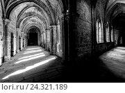 Купить «Cloister, cathedral, Plasencia, Extremadura, Spain, Europe», фото № 24321189, снято 22 августа 2018 г. (c) mauritius images / Фотобанк Лори