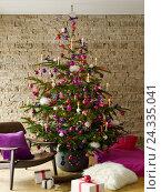 Купить «Christmas tree, mauve, pink and red», фото № 24335041, снято 21 сентября 2018 г. (c) mauritius images / Фотобанк Лори