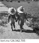 Купить «Zwei kleine Kinder bei einem Spaziergang in der Sonne, Deutschland 1930er Jahre. Two toddlers strolling through summer, Germany 1930s.», фото № 24342705, снято 23 июля 2018 г. (c) mauritius images / Фотобанк Лори