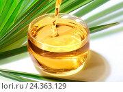 Купить «Palm oil», фото № 24363129, снято 4 мая 2016 г. (c) age Fotostock / Фотобанк Лори