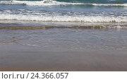 Купить «Морской прибой. Пустынный песочный пляж», видеоролик № 24366057, снято 24 сентября 2015 г. (c) Евгений Ткачёв / Фотобанк Лори