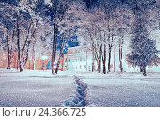 Купить «Winter landscape - city winter park covered with frosted trees and snowflakes in the night», фото № 24366725, снято 21 марта 2019 г. (c) Зезелина Марина / Фотобанк Лори